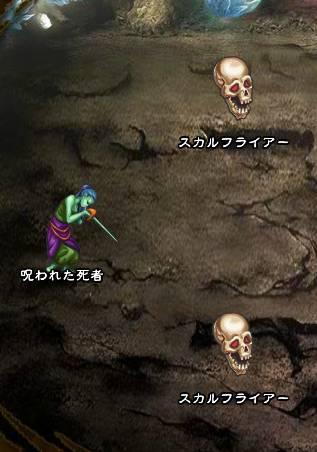 3回目。右へ分岐したメンバーのみ。 スカルフライアー×2 呪われた死者