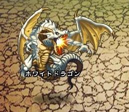 ホワイトドラゴン【ウコムの試練】