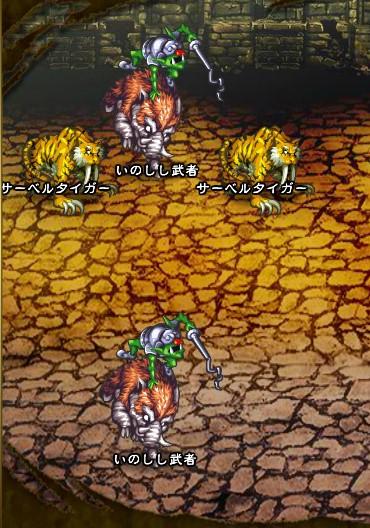 5回目。左へ分岐したメンバーのみ。 サーベルタイガー×2 いのしし武者×2