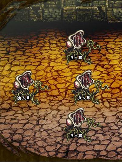 7回目。右分岐後さらに左へ分岐したメンバーのみ。 食人草×4