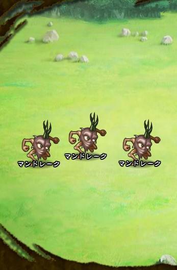 5回目。左分岐後さらに左へ分岐したメンバーのみ。 マンドレーク×3
