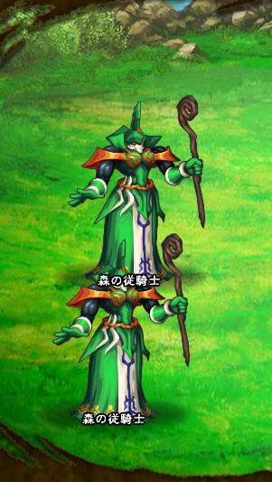 7回目。 森の従騎士×2