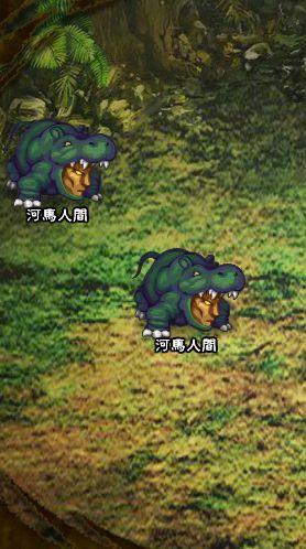 4回目。左へ分岐したメンバーのみ。 河馬人間×2