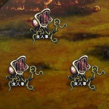 4回目。左へ分岐したメンバーのみ。 食人草×3